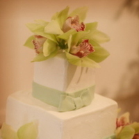 Reception, Flowers & Decor, Cakes, white, ivory, green, cake, Square Wedding Cakes, Square, Flowers, Wedding, Orchids, My sorted affair