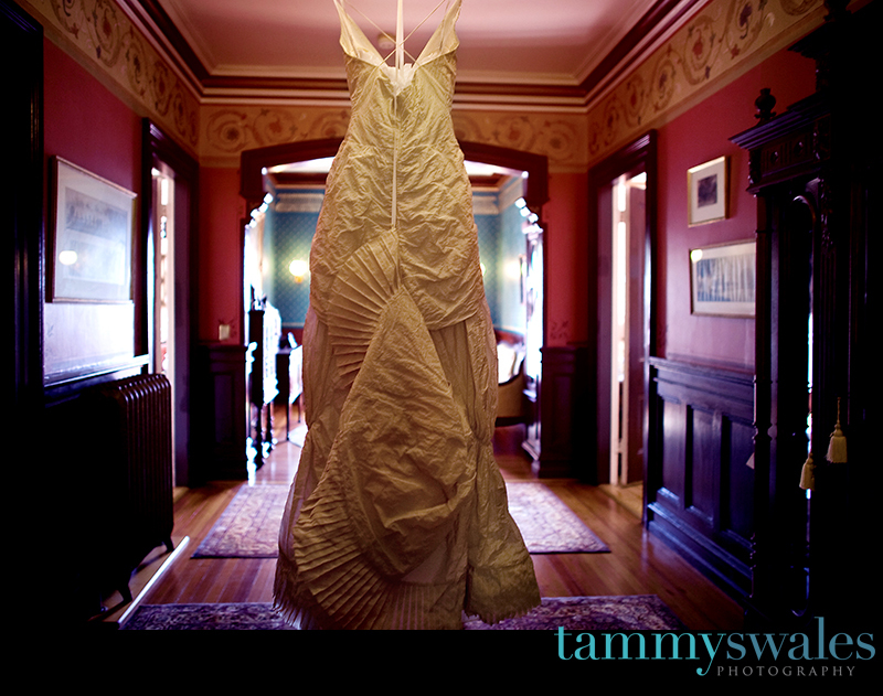 Wedding Dresses, Fashion, dress, Wedding, Photographer, Getting, Ready, Ny, Rochester, Tammy swales photography