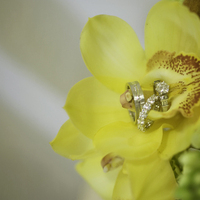 Inspiration, Flowers & Decor, Jewelry, Destinations, yellow, gold, Mexico, Flowers, Rings, Wedding, Board, Weddings, Alec t photography