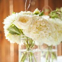 Reception, white