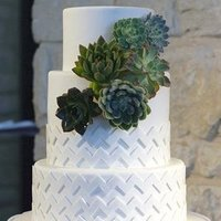 Textured Succulent Three-Tiered Cake