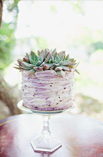 Rustic Succulent Cake
