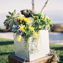 1375376580 thumb photo preview yellow and gray california wedding 6