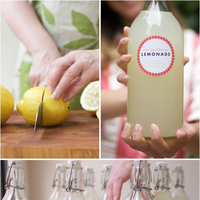 Lemonade Favors