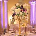 1375468970 thumb kelley cannon events 2