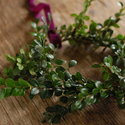 1375582098_thumb_1367516542_content_diy_wedding-wreaths_10