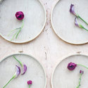 1375582103 thumb 1367610228 content diy floral wall installation 1