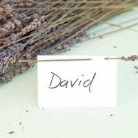 DIY Lavender Escort Cards