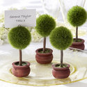 1375582242 thumb 1368137481 content diy topiary escort cards 6