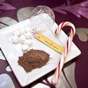 1375582328 thumb 1367609908 content diy favors hot cocoa ornaments 1