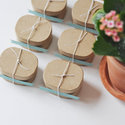 1375582387 thumb 1368044754 content diy springtime seedling favors 1