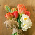 1375582457_thumb_1367357833_content_diy_easy-spring-bouquet_1