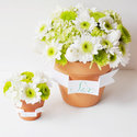 1375582532 thumb 1369859632 content diy flower pot favors and centerpieces 8