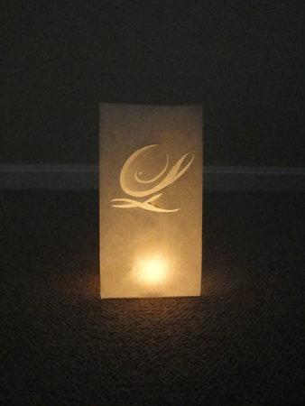 diy wedding challage 2010 monogramed luminaries project wedding. Black Bedroom Furniture Sets. Home Design Ideas