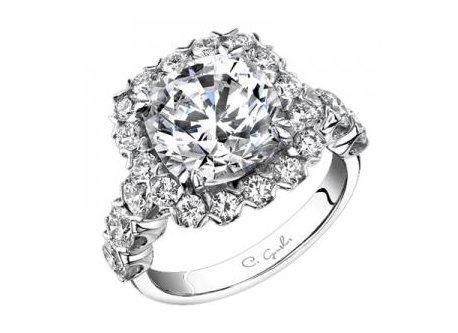 Biggest wedding ring biggest wedding ring biggest wedding rings biggest wedding rings biggest wedding ring ever beautiful fresh junglespirit Gallery