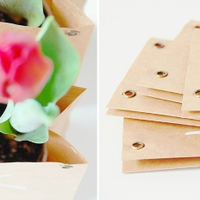 DIY: Tulip Bulb Favors
