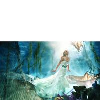 Wedding Dresses, Sweetheart Wedding Dresses, Fashion, Mermaid, Sweetheart, Strapless, Strapless Wedding Dresses, Belt, Alfred angelo, chapel train, dropped waist