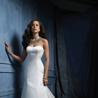 Wedding Dresses, Lace Wedding Dresses, Fashion, Classic, Lace, Strapless, Strapless Wedding Dresses, Satin, Alfred angelo, Classic Wedding Dresses, satin wedding dresses