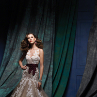Wedding Dresses, Lace Wedding Dresses, Fashion, Lace, Beige, Ribbon, Belt, Alfred angelo, chapel train