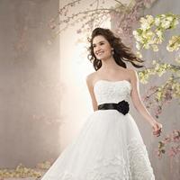 Wedding Dresses, Ball Gown Wedding Dresses, Fashion, Organza, Flower detail, Alfred angelo, Ball gown, black floral belt, organza wedding dresses