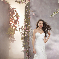Wedding Dresses, Lace Wedding Dresses, Fashion, Lace, Strapless, Strapless Wedding Dresses, Alfred angelo, 3D flower