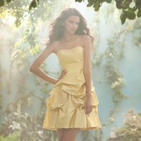 Bridesmaids, Bridesmaids Dresses, Fashion, yellow, Strapless, Strapless Wedding Dresses, Alfred angelo, Pick-ups, luxe taffeta