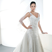 Wedding Dresses, A-line Wedding Dresses, Fashion, A-line, Tulle, Demetrios, Beaded, Embellished, Attached Train, V-neckline, Scoop back, Jeweling, tulle wedding dresses