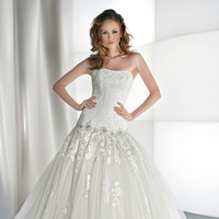Wedding Dresses, Lace Wedding Dresses, Fashion, Gown, Lace, Strapless, Strapless Wedding Dresses, Tulle, Demetrios, Jeweled, dropped waist, Attached Train, Corset back, tulle wedding dresses