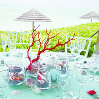 Flowers & Decor, Destinations, Beach Weddings