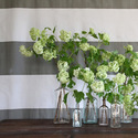 1375606431_thumb_1369260580_flowers_spring-centerpieces-you_ll-love_8