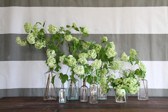 Flowers & Decor, Wedding Style, green, Centerpieces, Spring Weddings, Spring Wedding Flowers & Decor, Summer Wedding Flowers & Decor, Centerpiece