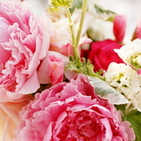 Flowers & Decor, Real Weddings, Wedding Style, pink, Centerpieces, Garden Real Weddings, Garden Weddings