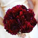1375611154 thumb 1370296027 real wedding amy and tim ca 3.jpg