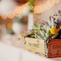 Flowers & Decor, Real Weddings, Wedding Style, yellow, green, Centerpieces, Rustic Real Weddings, West Coast Real Weddings, Eco-Friendly Real Weddings, Eco-Friendly Weddings, Rustic Weddings, Eco-Friendly Wedding Flowers & Decor, Rustic Wedding Flowers & Decor, Succulents, Billy balls