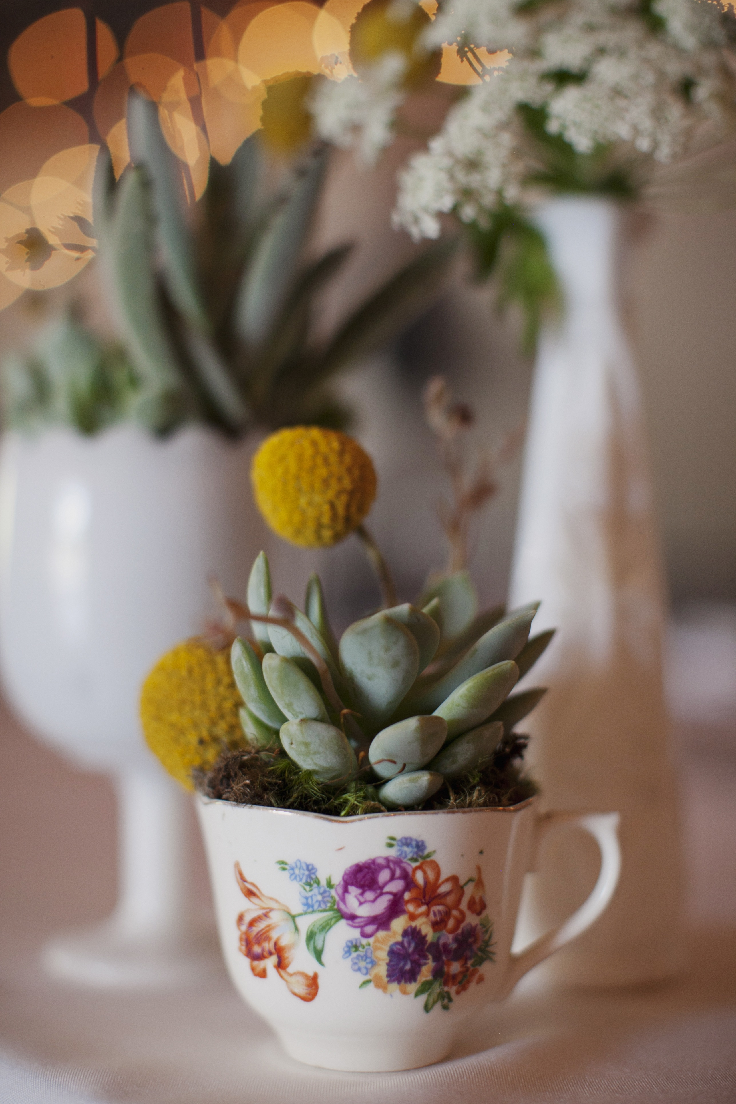 Flowers & Decor, Real Weddings, Wedding Style, yellow, green, Centerpieces, Rustic Real Weddings, West Coast Real Weddings, Eco-Friendly Real Weddings, Eco-Friendly Weddings, Rustic Weddings, Eco-Friendly Wedding Flowers & Decor, Vintage Wedding Flowers & Decor, Succulents, Billy balls, teacups