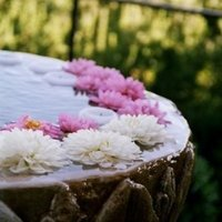 Real Weddings, pink, Spring Weddings, West Coast Real Weddings, Garden Real Weddings, Spring Real Weddings, Garden Weddings, Garden Wedding Flowers & Decor, Spring Wedding Flowers & Decor