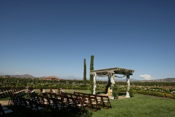 Real Weddings, Wedding Style, green, Ceremony Flowers, West Coast Real Weddings, Vineyard Real Weddings, Vineyard Weddings