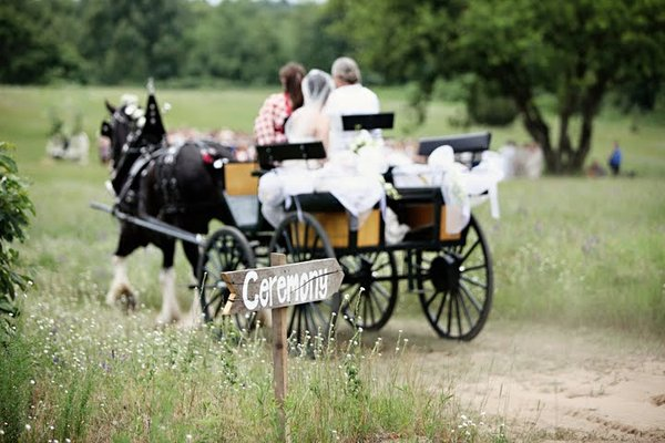Real Weddings, Wedding Style, Summer Weddings, Midwest Real Weddings, Summer Real Weddings, Horse, Carriage