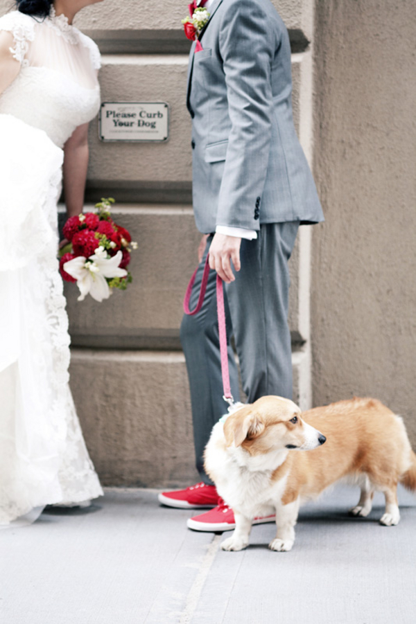 Real Weddings, Wedding Style, Northeast Real Weddings, Modern Real Weddings, Modern Weddings, Pets