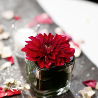 Flowers & Decor, Real Weddings, Wedding Style, red, Centerpieces, Northeast Real Weddings, Modern Real Weddings, Modern Weddings, Modern Wedding Flowers & Decor, Dahlias