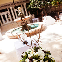 Flowers & Decor, Real Weddings, Wedding Style, white, Ceremony Flowers, Southern Real Weddings, Classic Real Weddings, Classic Weddings, Classic Wedding Flowers & Decor, Spring Wedding Flowers & Decor