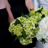 Real Weddings, Wedding Style, Summer Weddings, Summer Real Weddings, West Coast Real Weddings, Modern Real Weddings, Modern Weddings, Flowers & Decor, Summer Wedding Flowers & Decor, Bridesmaid Bouquets, white, green, Hydrangea