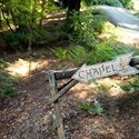 1375614340_thumb_1371052388_real_weddings_deena-and-joe-redwood-estates-california-3