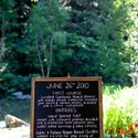 1375614371_thumb_1371053719_real_weddings_deena-and-joe-redwood-estates-california-12