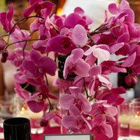 Real Weddings, Wedding Style, pink, Spring Weddings, Glam Real Weddings, Spring Real Weddings, Glam Weddings