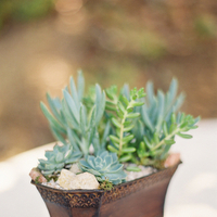 Flowers & Decor, Real Weddings, green, Centerpieces, Eco-Friendly Real Weddings, Eco-Friendly Weddings, Eco-Friendly Wedding Flowers & Decor, Modern Wedding Flowers & Decor, Spring Wedding Flowers & Decor, Summer Wedding Flowers & Decor, Vineyard Wedding Flowers & Decor, Vintage Wedding Flowers & Decor, Centerpiece, Succulents, Fresh, Real wedding, Succulent