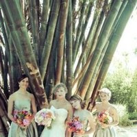 Flowers & Decor, Bridesmaids Dresses, Fashion, Real Weddings, Wedding Style, Bridesmaid Bouquets, Summer Weddings, Summer Real Weddings, Summer Wedding Flowers & Decor, Tan, West Coast Weddings
