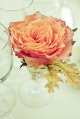 Flowers & Decor, Real Weddings, Wedding Style, orange, Centerpieces, Summer Weddings, Summer Real Weddings, Summer Wedding Flowers & Decor, West Coast Weddings