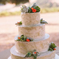 Cakes, Real Weddings, Wedding Style, green, brown, Eco-Friendly Wedding Cakes, Vineyard Wedding Cakes, Wedding Cakes, Rustic Real Weddings, West Coast Real Weddings, Eco-Friendly Real Weddings, Summer Real Weddings, Vineyard Real Weddings, Eco-Friendly Weddings, Rustic Weddings, Vineyard Weddings