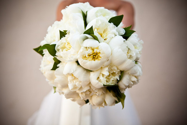 Flowers & Decor, Real Weddings, Wedding Style, white, Bride Bouquets, Classic Real Weddings, Classic Weddings, Classic Wedding Flowers & Decor, West Coast Weddings